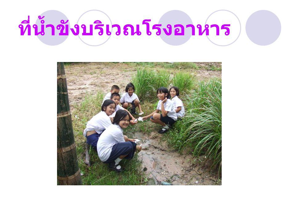 ที่น้ำขังบริเวณโรงอาหาร