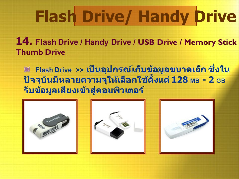 Flash Drive/ Handy Drive