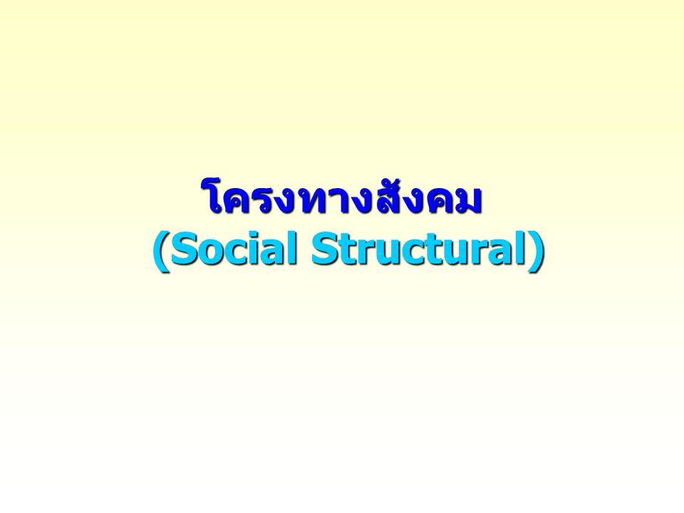 โครงทางสังคม (Social Structural)