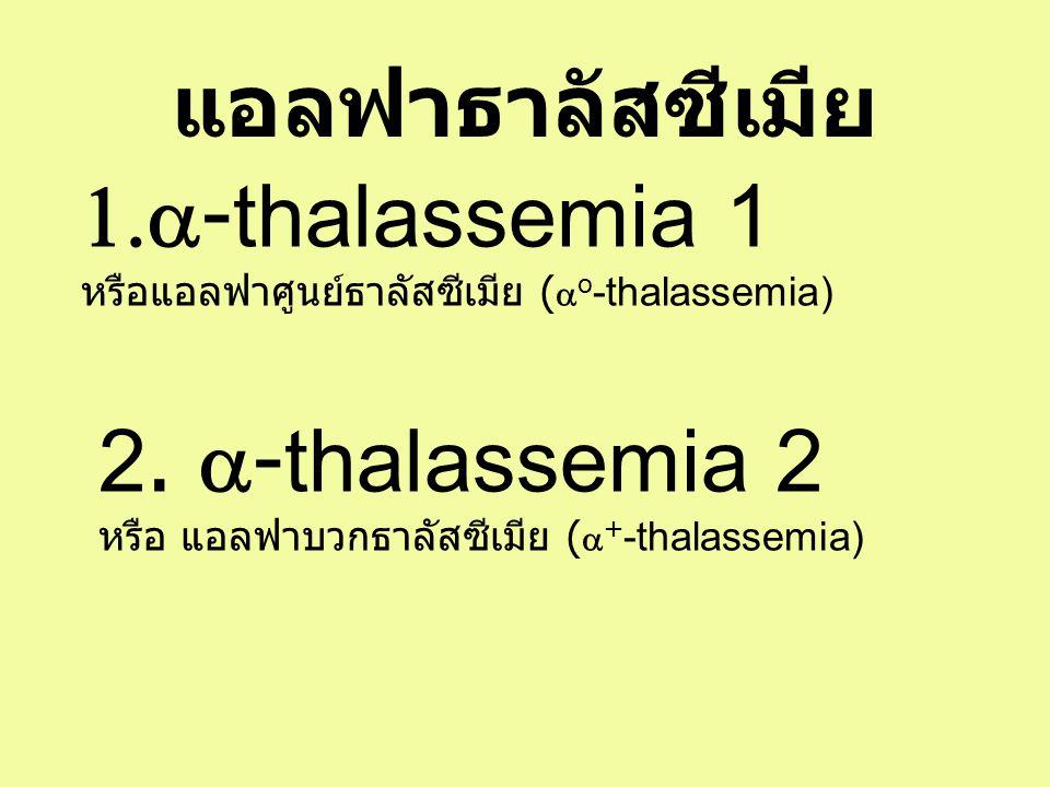 แอลฟาธาลัสซีเมีย a-thalassemia 1 2. a-thalassemia 2