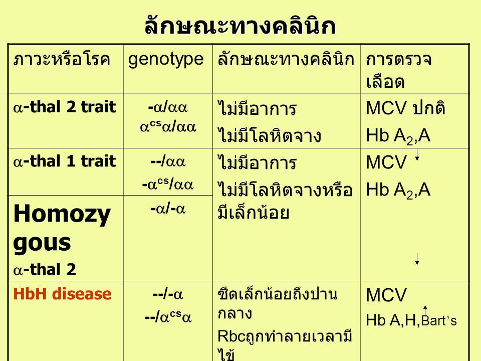 ลักษณะทางคลินิก Homozygous ภาวะหรือโรค genotype ลักษณะทางคลินิก