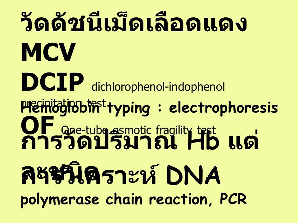 วัดดัชนีเม็ดเลือดแดง MCV