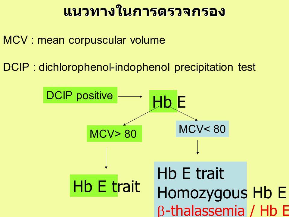 Hb E Hb E trait Homozygous Hb E Hb E trait แนวทางในการตรวจกรอง