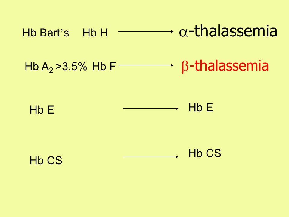 a-thalassemia b-thalassemia Hb Bart's Hb H Hb A2 >3.5% Hb F Hb E