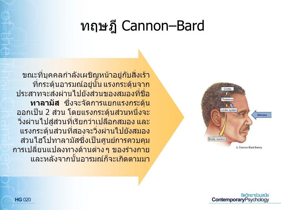 ทฤษฎี Cannon–Bard