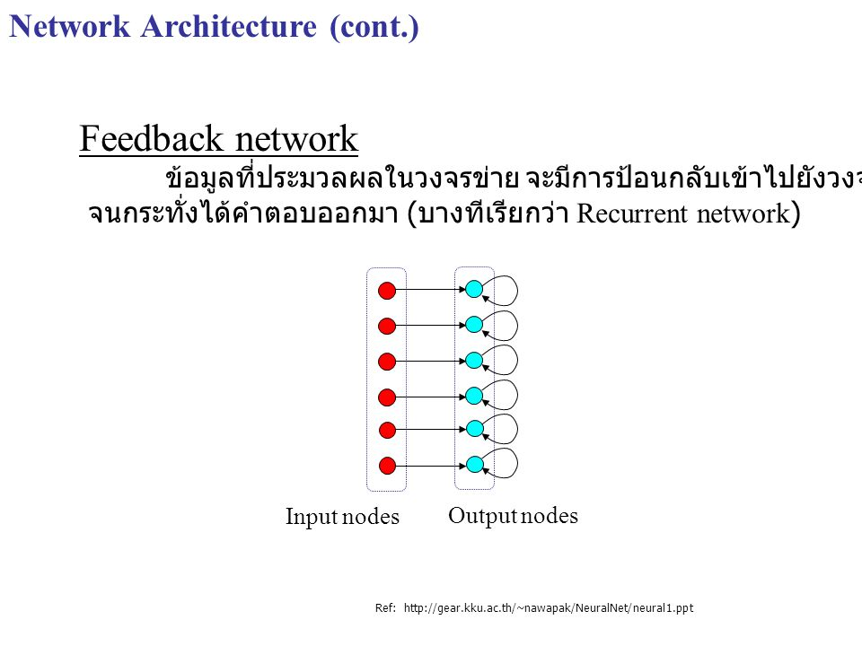 Feedback network Network Architecture (cont.)