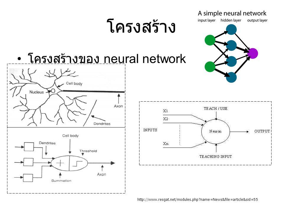 โครงสร้าง โครงสร้างของ neural network