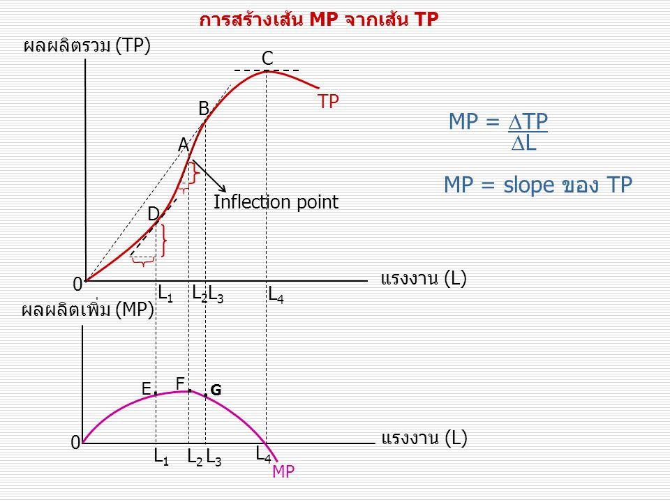 .G MP = TP L MP = slope ของ TP การสร้างเส้น MP จากเส้น TP