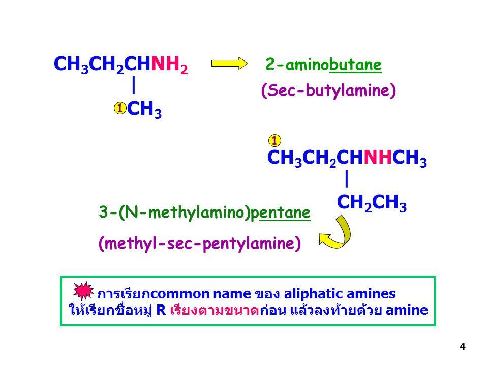 CH3CH2CHNH2 | CH3 CH3CH2CHNHCH3 | CH2CH3 2-aminobutane