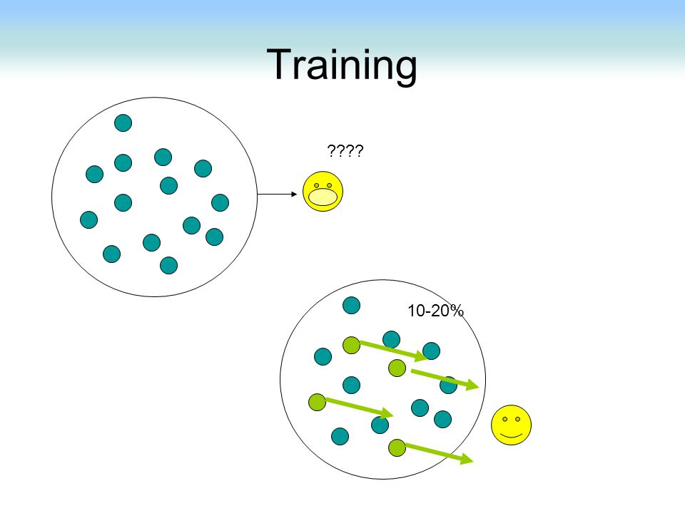 Training 10-20%
