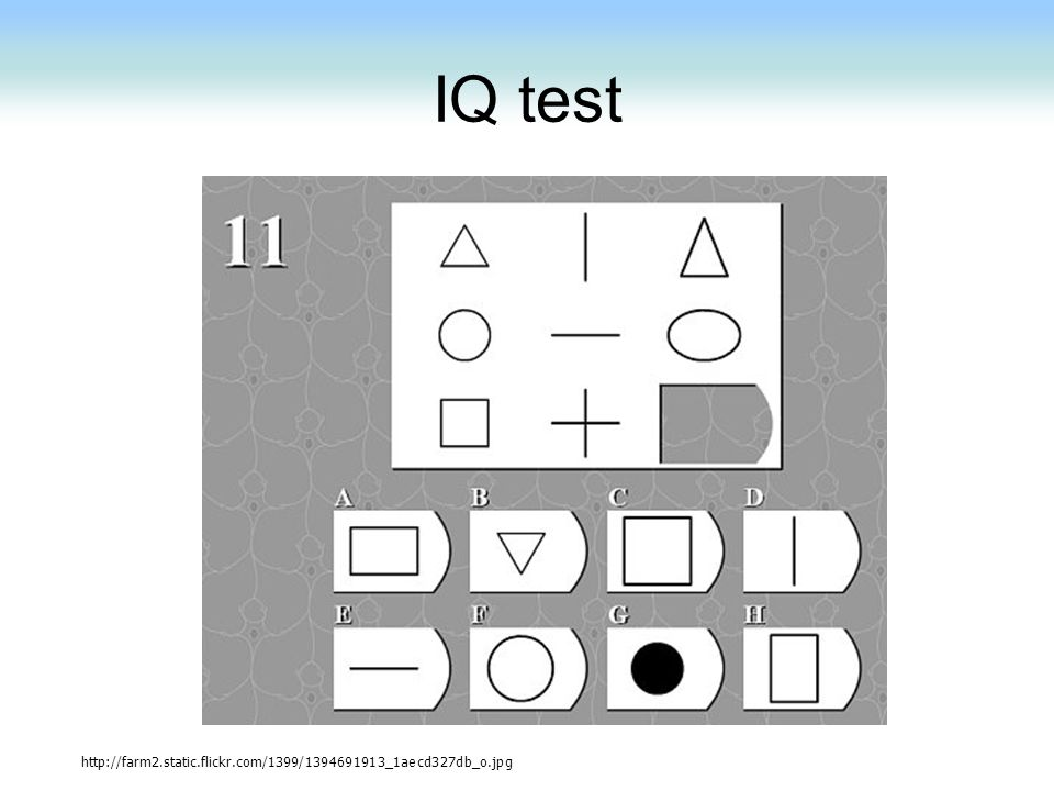 IQ test http://farm2.static.flickr.com/1399/1394691913_1aecd327db_o.jpg