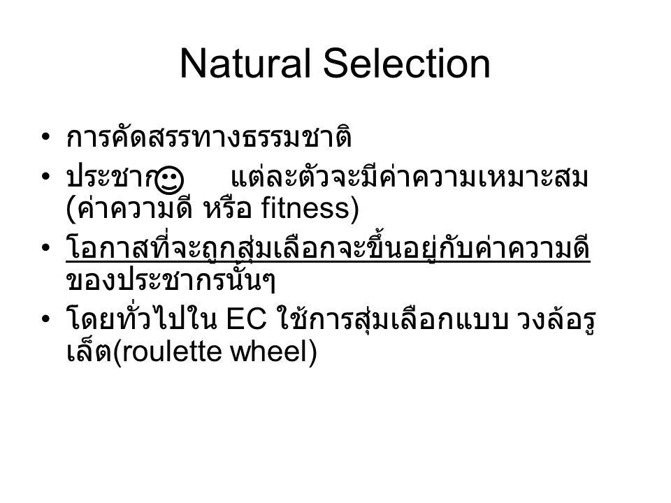 Natural Selection การคัดสรรทางธรรมชาติ