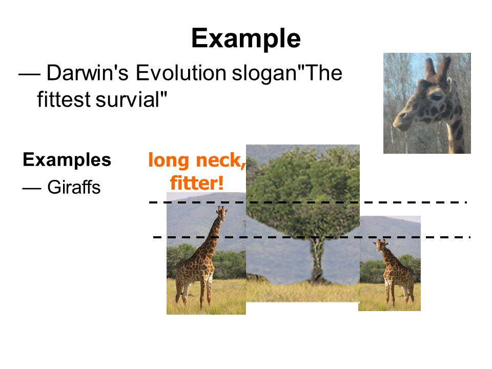 Example — Darwin s Evolution slogan The fittest survial Examples