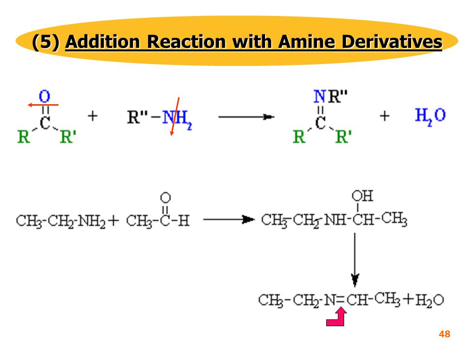 (5) Addition Reaction with Amine Derivatives