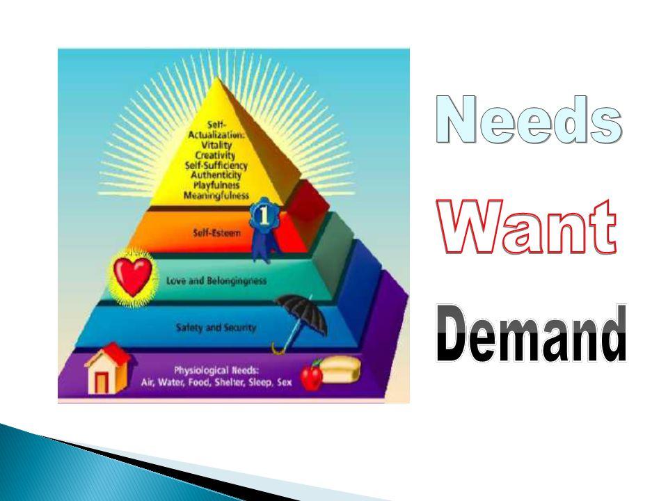 Needs Want Demand