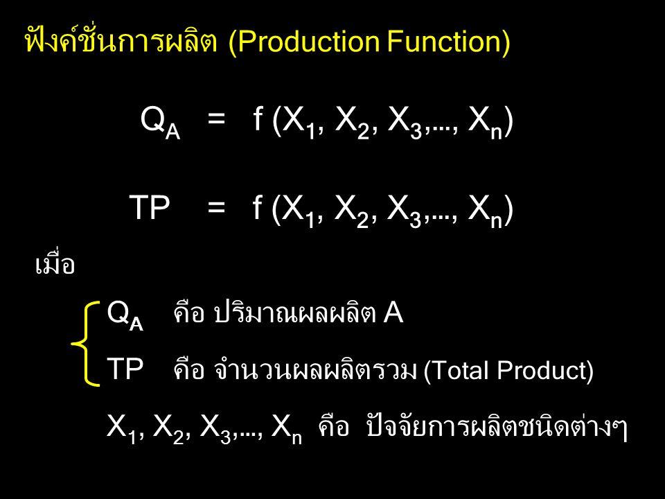 ฟังค์ชั่นการผลิต (Production Function)