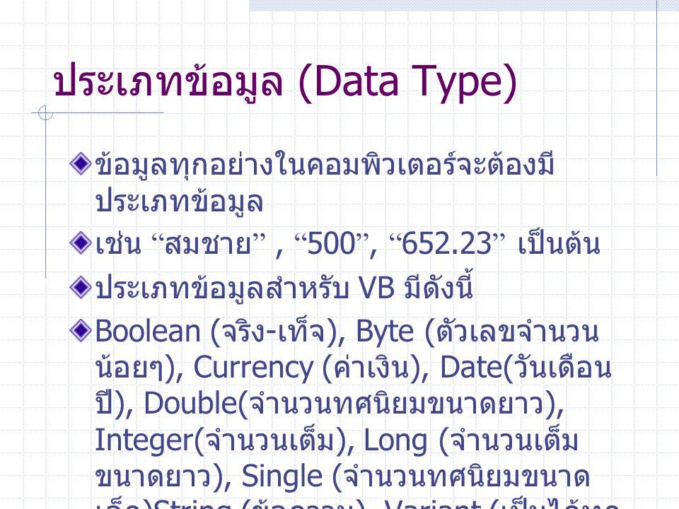 ประเภทข้อมูล (Data Type)
