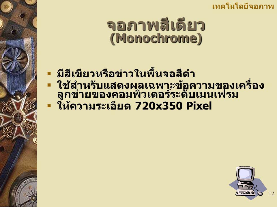 จอภาพสีเดียว (Monochrome)