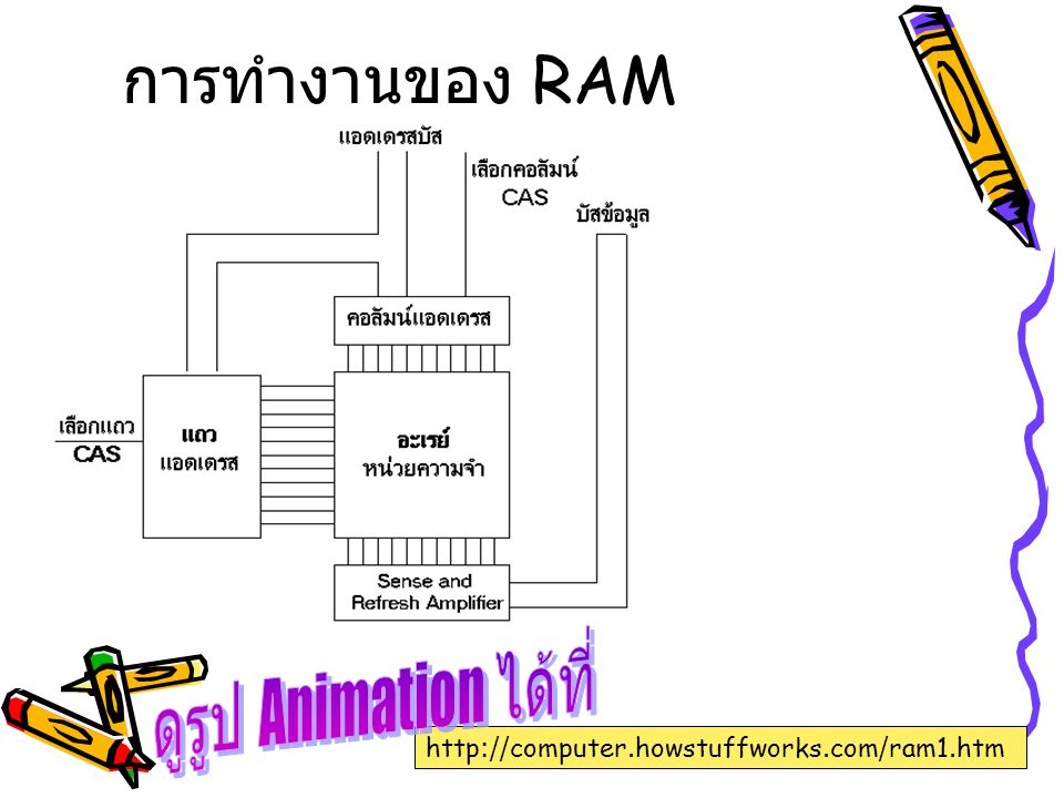 ดูรูป Animation ได้ที่