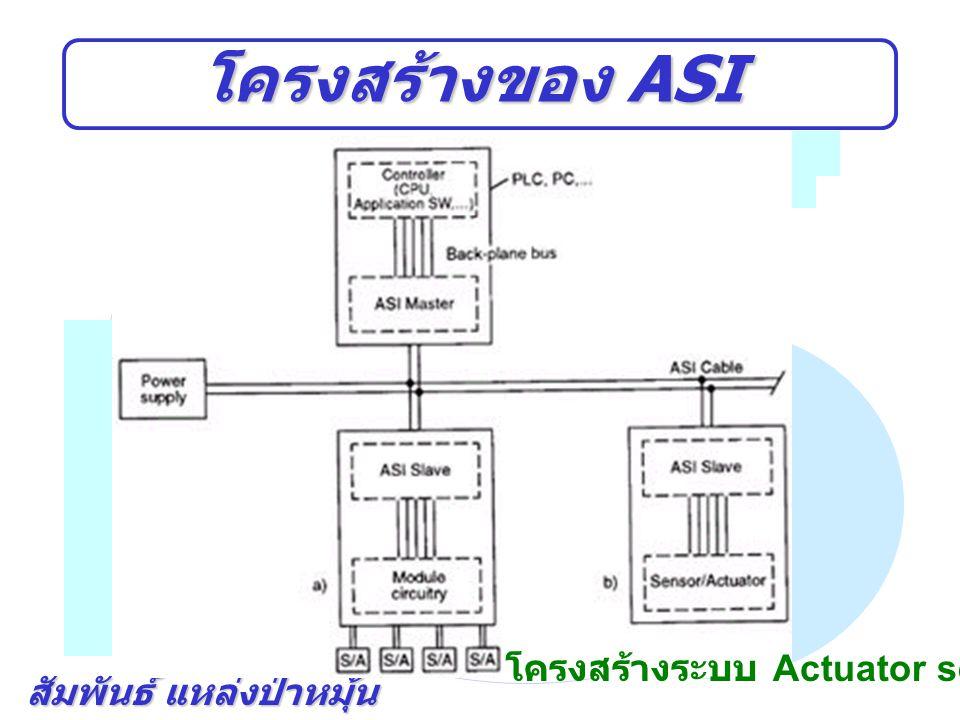 โครงสร้างของ ASI โครงสร้างระบบ Actuator sensor Interface