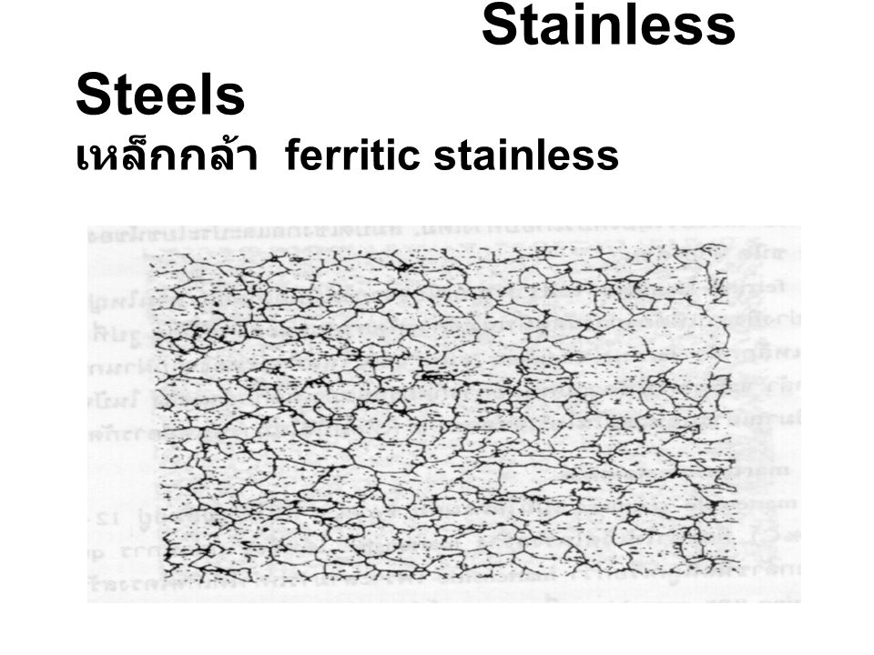 Stainless Steels เหล็กกล้า ferritic stainless