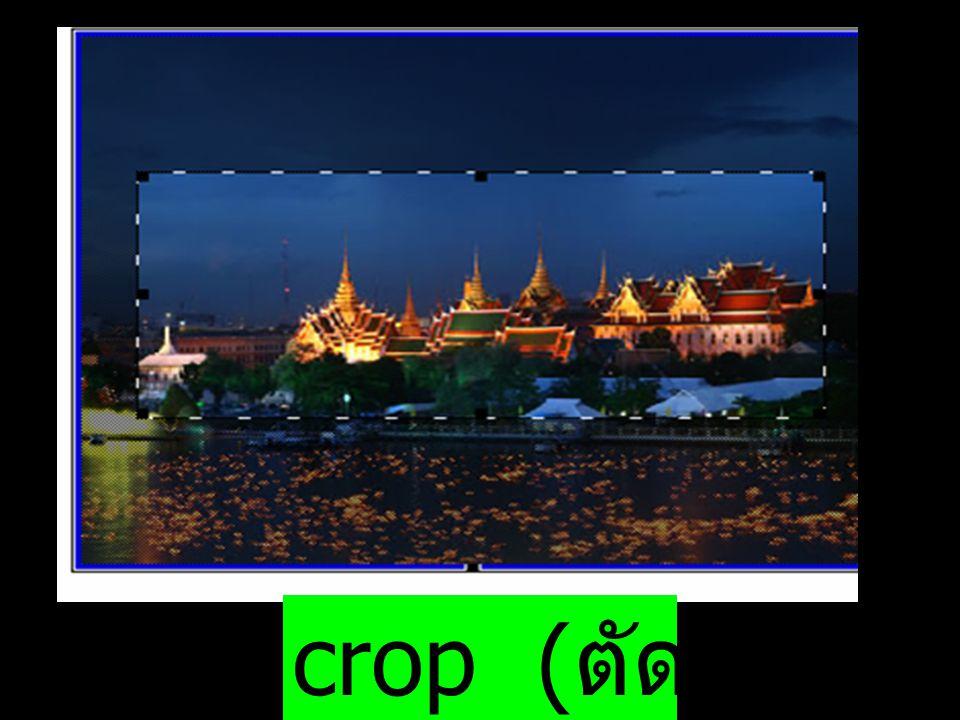 crop (ตัดภาพ)