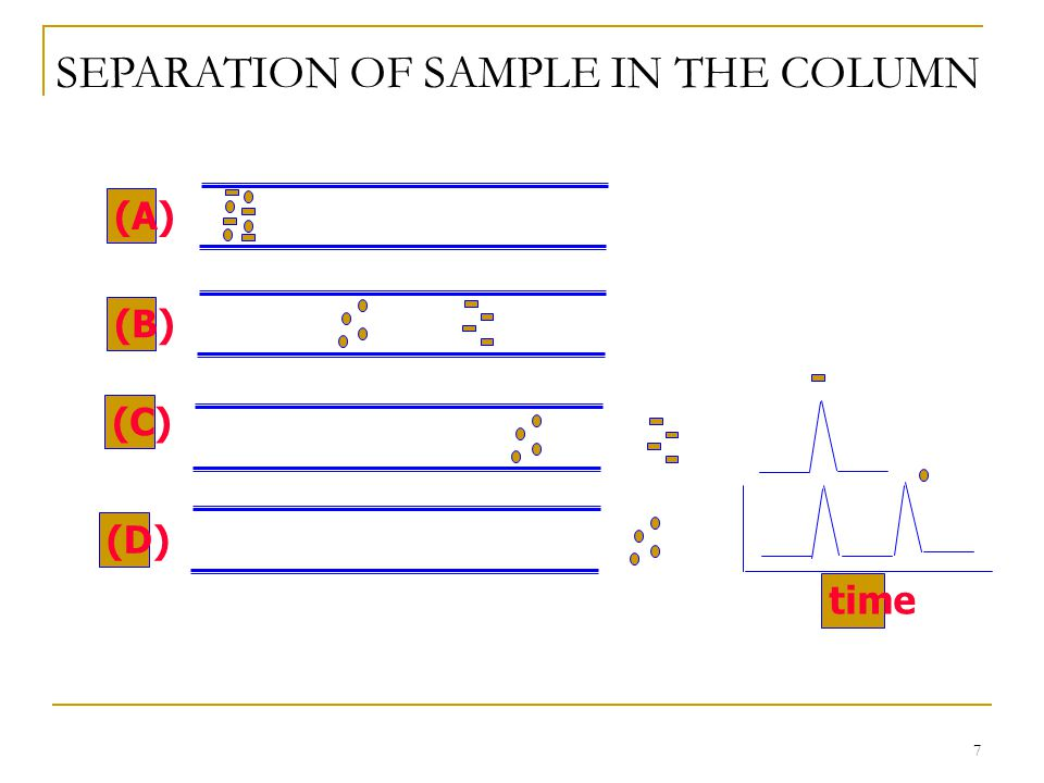 SEPARATION OF SAMPLE IN THE COLUMN