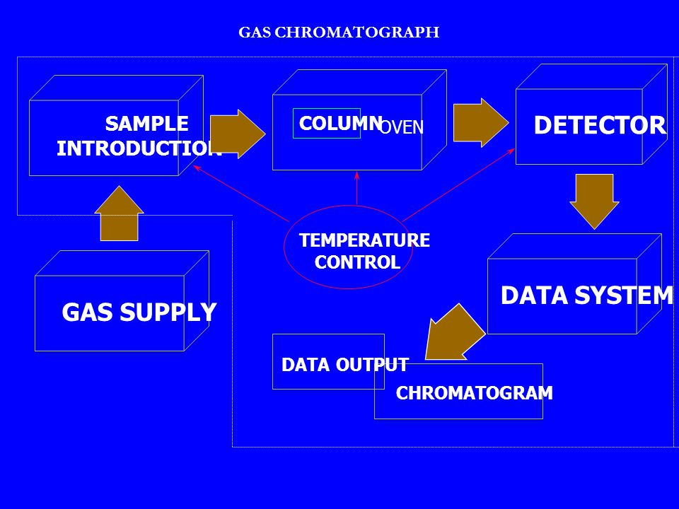 DETECTOR DATA SYSTEM GAS SUPPLY SAMPLE INTRODUCTION COLUMN OVEN