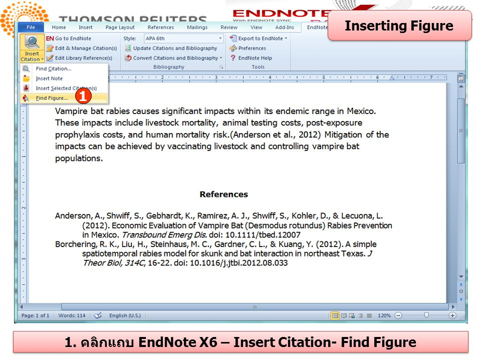 1. คลิกแถบ EndNote X6 – Insert Citation- Find Figure