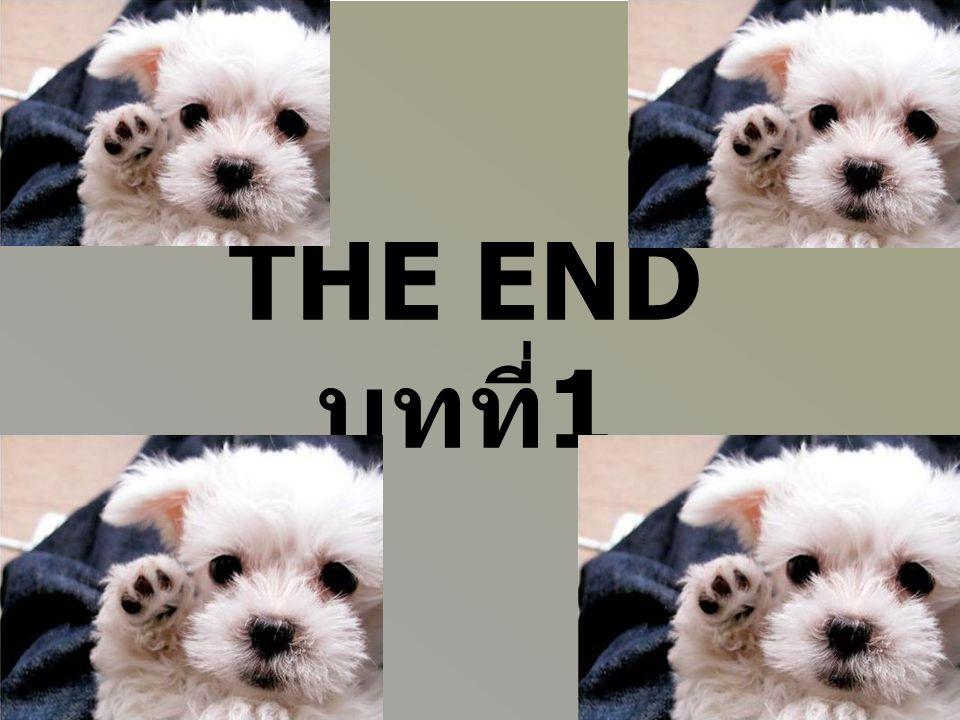 THE END บทที่1