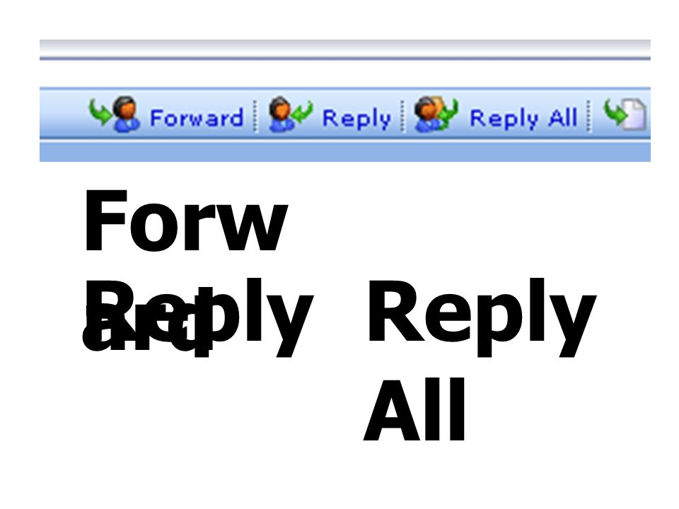 Forward Reply Reply All