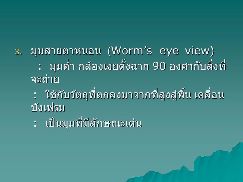 มุมสายตาหนอน (Worm's eye view)