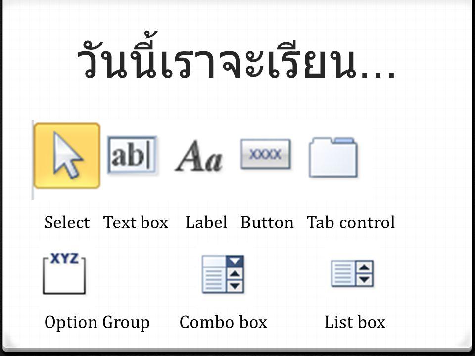 วันนี้เราจะเรียน... Select Text box Label Button Tab control