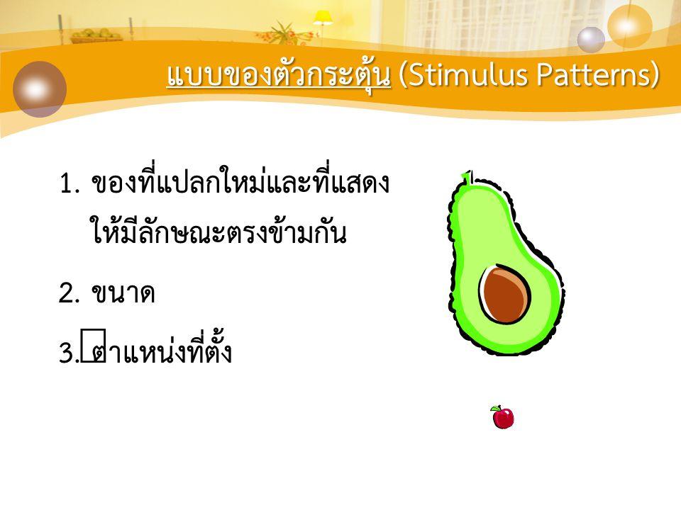 แบบของตัวกระตุ้น (Stimulus Patterns)