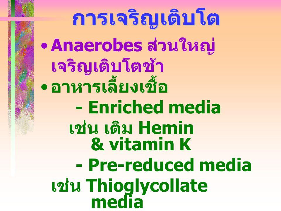 การเจริญเติบโต Anaerobes ส่วนใหญ่เจริญเติบโตช้า อาหารเลี้ยงเชื้อ