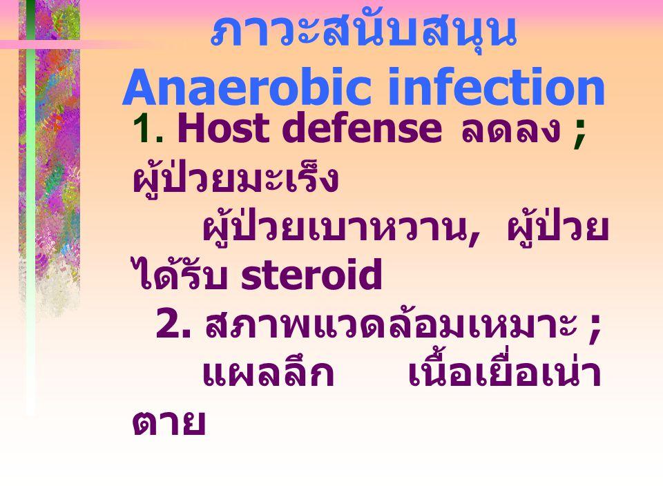 ภาวะสนับสนุน Anaerobic infection