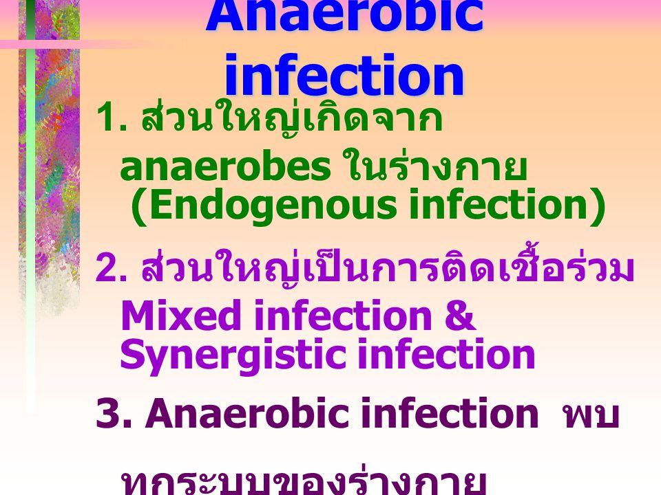 Anaerobic infection 1. ส่วนใหญ่เกิดจาก anaerobes ในร่างกาย