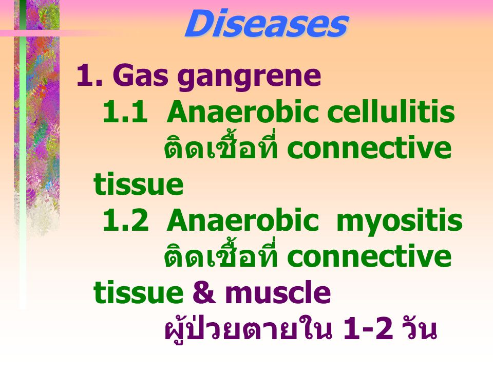 Diseases 1. Gas gangrene 1.1 Anaerobic cellulitis