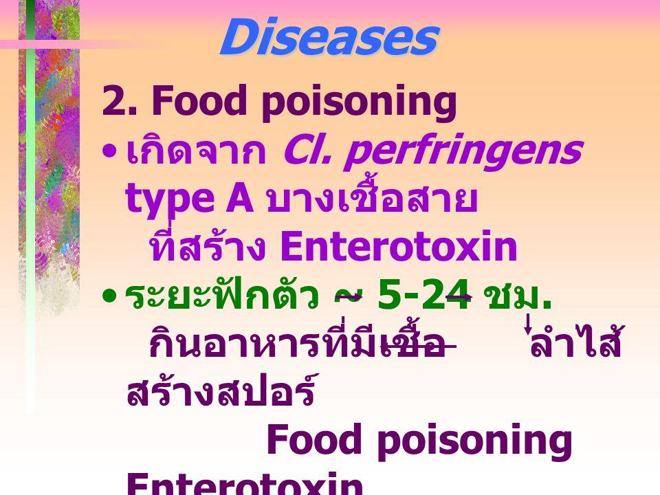 Diseases 2. Food poisoning เกิดจาก Cl. perfringens type A บางเชื้อสาย