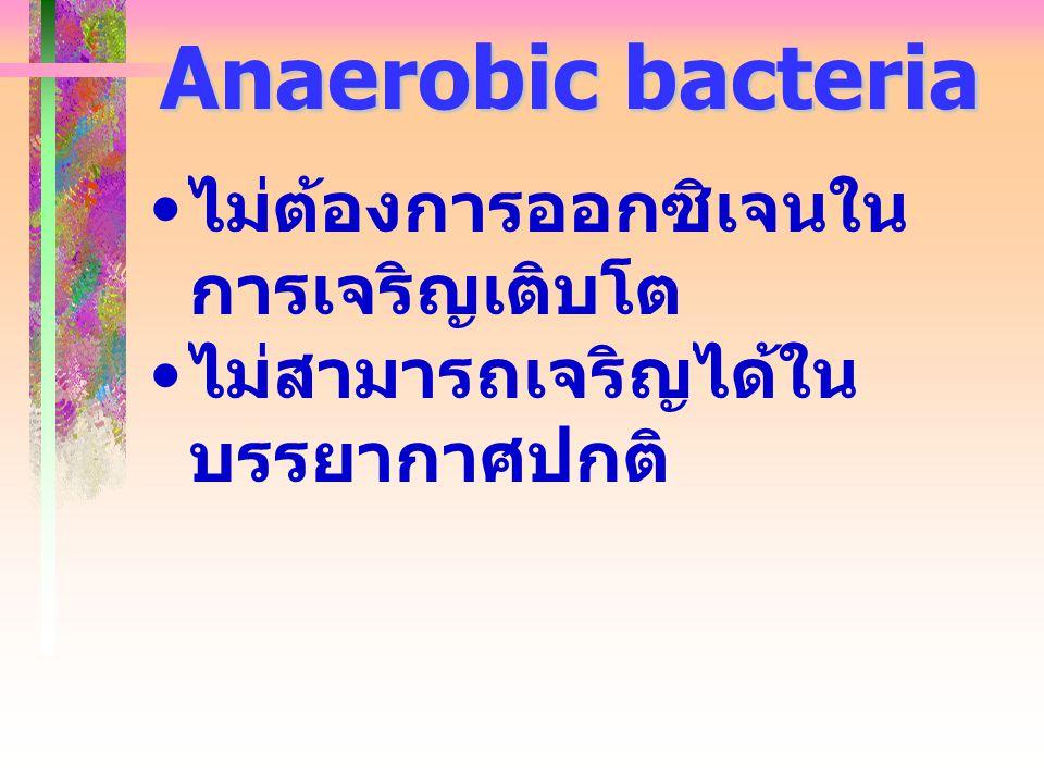 Anaerobic bacteria ไม่ต้องการออกซิเจนในการเจริญเติบโต