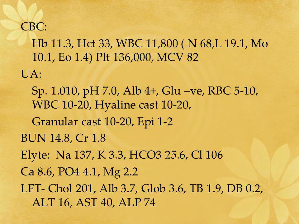 CBC: Hb 11.3, Hct 33, WBC 11,800 ( N 68,L 19.1, Mo 10.1, Eo 1.4) Plt 136,000, MCV 82. UA: