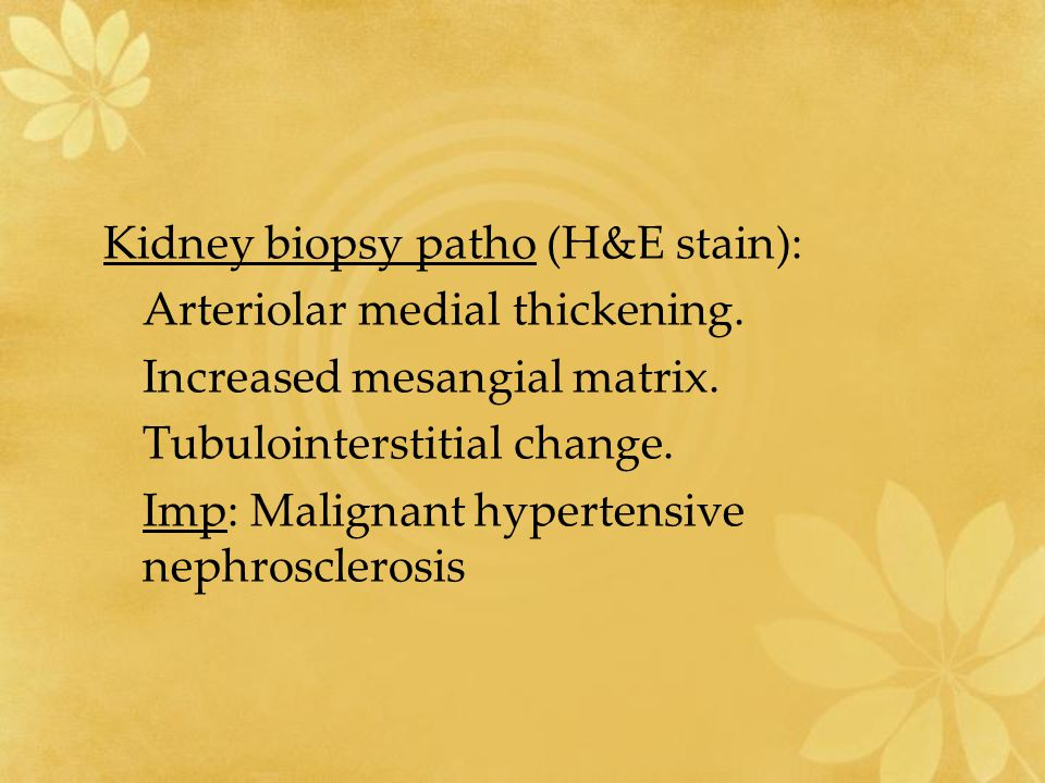Kidney biopsy patho (H&E stain):