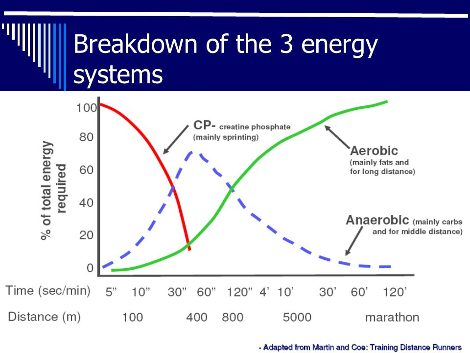 Breakdown of the 3 energy systems
