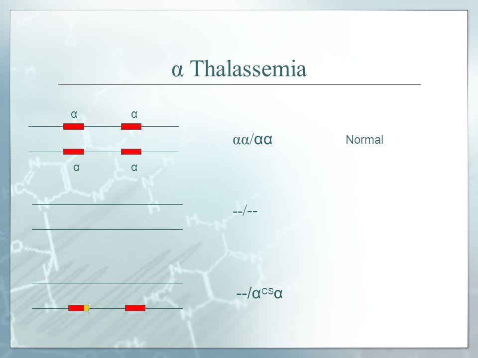 α Thalassemia α αα/αα Normal --/-- --/αCSα