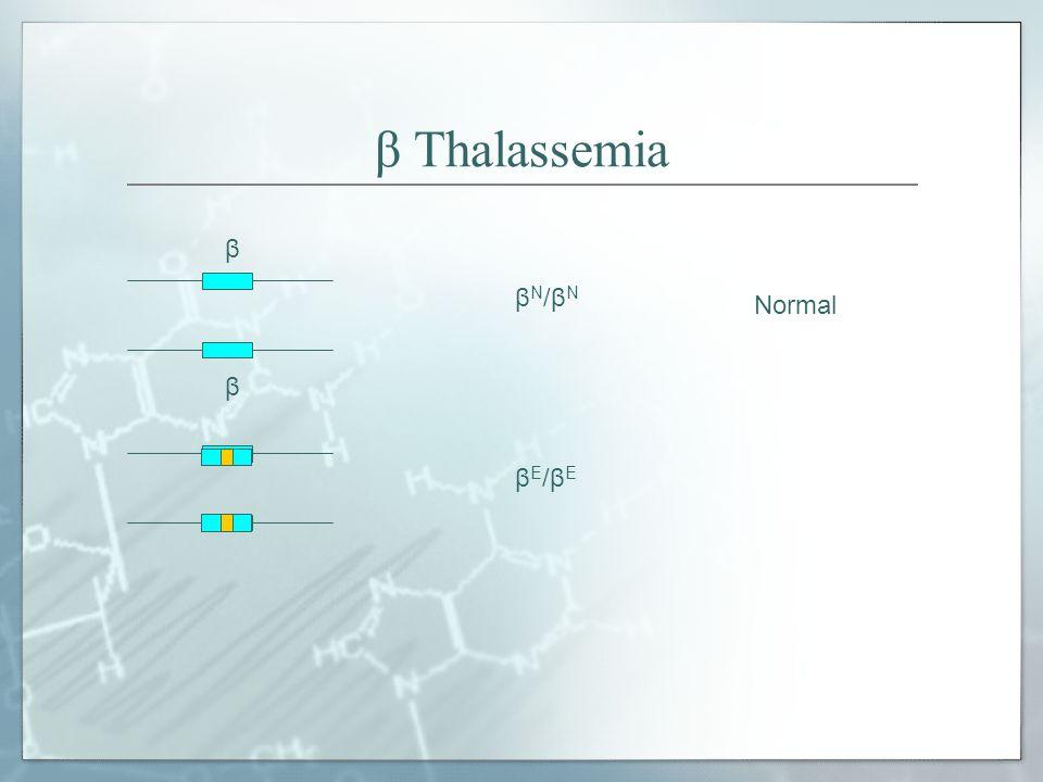 β Thalassemia β βN/βN Normal βE/βE