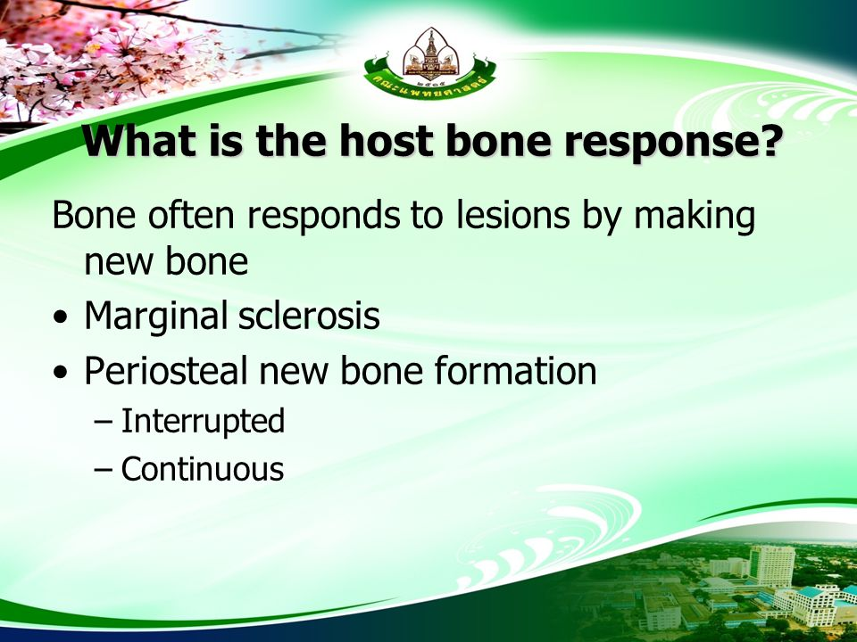 What is the host bone response