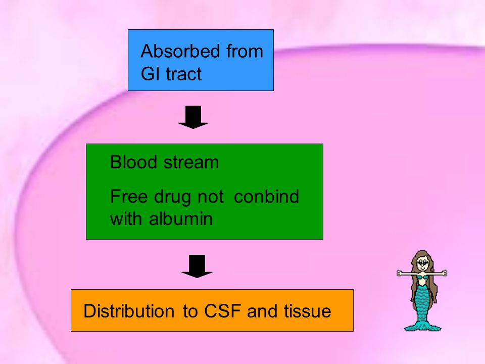 Absorbed from GI tract Blood stream. Free drug not conbind with albumin.