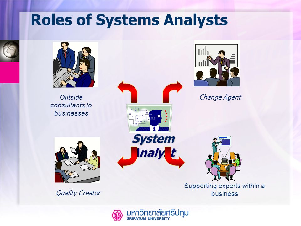 Roles of Systems Analysts