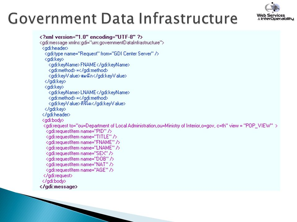 Government Data Infrastructure