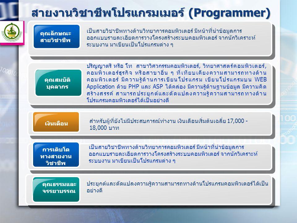สายงานวิชาชีพโปรแกรมเมอร์ (Programmer)